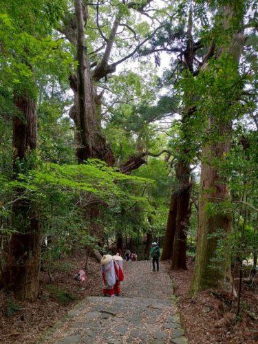 熊野古道と平安衣装