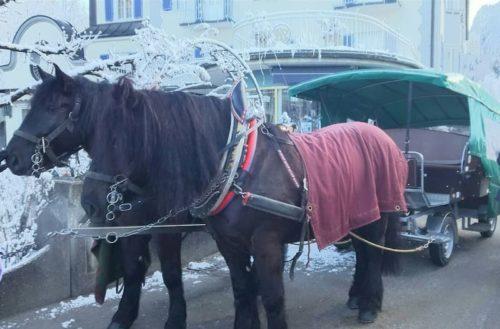 馬車でノイシュヴァンシュタイン城へ