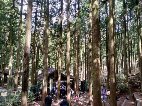 六甲山アスレチックの入り口
