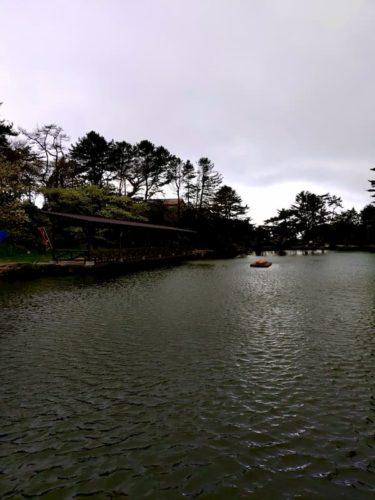 六甲山カンツリーハウスの池