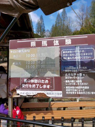 六甲山牧場の乗馬体験の看板
