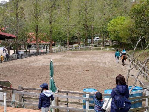 六甲山牧場の乗馬