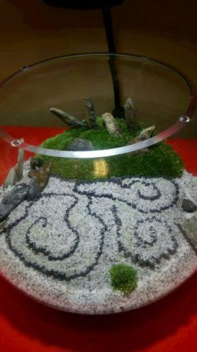圓光寺の置き物