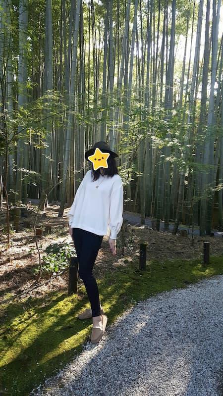 詩仙堂と私と竹林