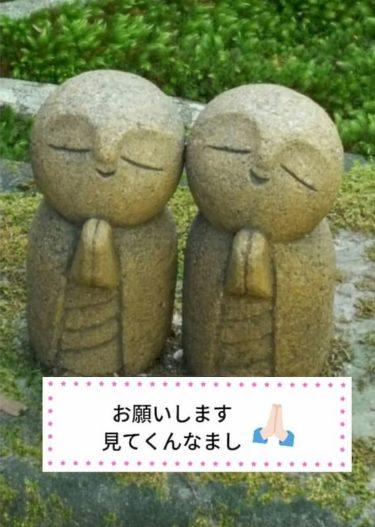 詩仙堂のかわいいお地蔵さん達!京都の紅葉なら、人が少ない[洛北]エリアがねらい目