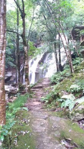 天橋立の金引の滝
