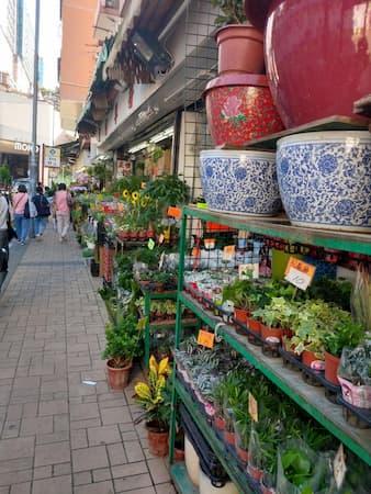 香港のフラワ-市場