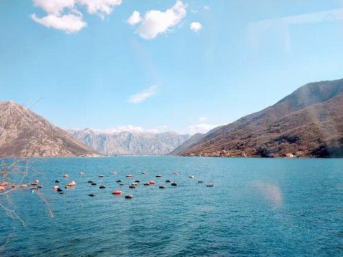 モンテネグロのコトル湾の景色