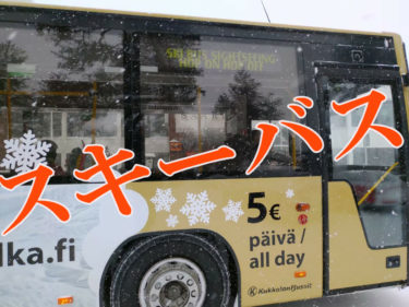 サーリセルカのバス時刻表